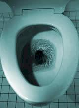 Les Instincts Y Ont Leur Place Avec Ce Quils Dincontrlable Le WC Fait Donc Un Contraste Maximal La Vie Sociale Extrieure De Famille